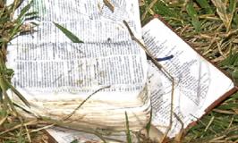 GOVERNADOR VALADARES (MG): IML divulga lista dos 10 mortos em grave acidente com ônibus de evangélicos